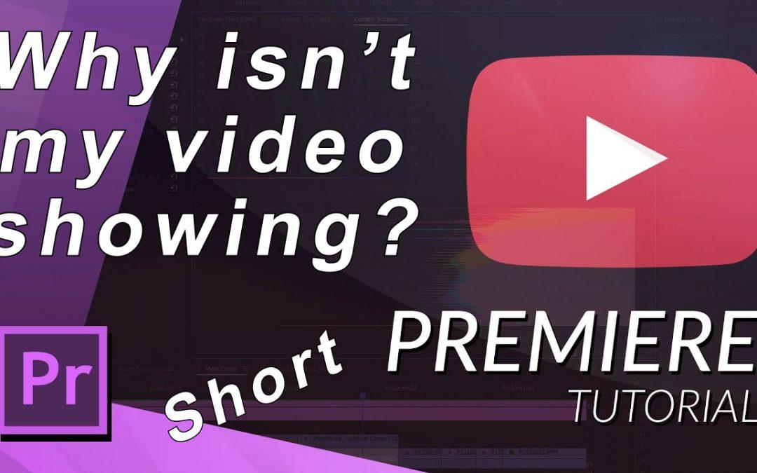 Videospoor niet zichtbaar ?  Adobe Premiere Pro Tutorial | Nederlands ondertiteld